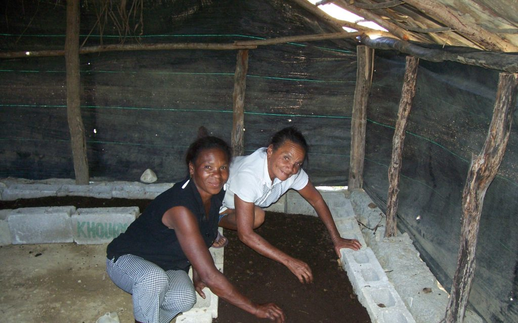 Worm composting for fertilizers